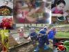 harvest-collage