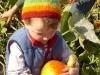 lla-beag-and-pumpkin-outing-021